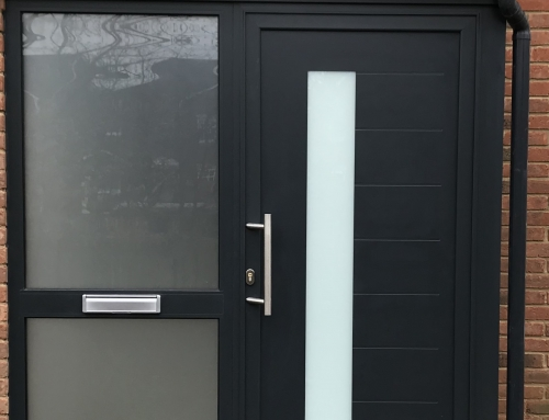 Contemporary entrance door